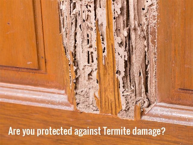 Termite Barriers up to 2x cheaper than Baits